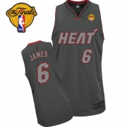 Adidas LeBron James Miami Heat Authentic Graystone Fashion With Finals Patch Jersey - Black